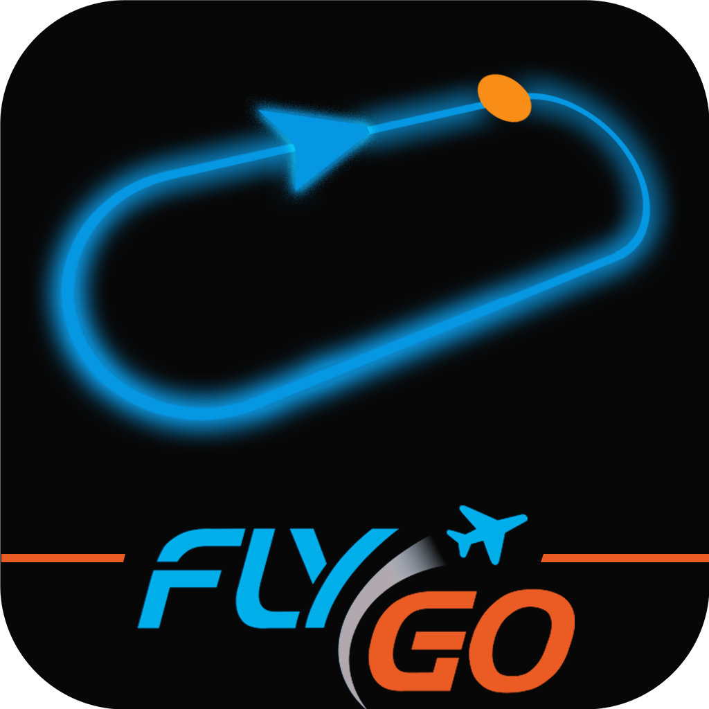 Holding Pattern (IFR) Instructor by FlyGo